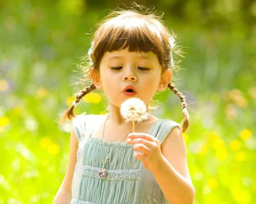 Young girl holding a dandelion